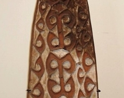 Asmat Tribal Shield
