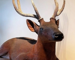 Intricately Hand Carved Old Wood Deer